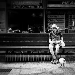 Brisbane 2017-2 (michelle-robinson.com) Tags: everyday michellerobinson blackandwhitephotography bw photography 4tografie monochrome australia black blackandwhite city snapseed life man streetlife brisbane bench queensland streetphotography sitting alone bird thinking observing squareformat watching ipadairedit ipadphotoapps xt10 fujifilm