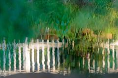 HFF - Fence Reflection (norasphotos4u) Tags: reflection canonef100400f4556iiusm flickr canon7dmkii social ©noraleonard water