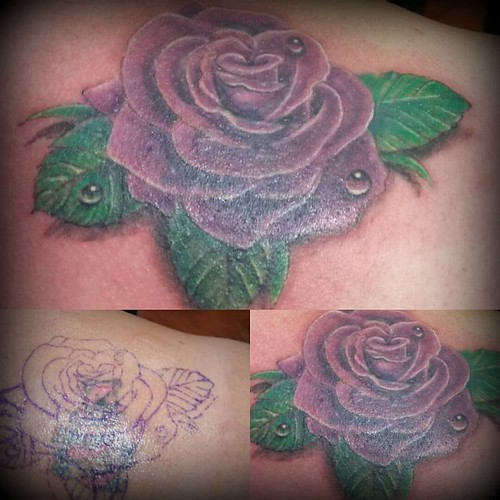 cover up rose
