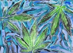 Grows Like A Weed - 2017 (Jurassic Blueberries) Tags: greensboro henderson buffalo chulavista orlando norfolk chandler laredo madison durham lubbock winston salem garland glendale hialeah reno batonrouge irvine chesapeake irving scottsdale fremont sanbernardino boise birmingham alabama manhattan eugene nba nfl mlb mls usaf uscg medford ncaa cannabis vape art artist abstract grow marijuana flickr apple starbucks nike google bing tumblr wordpress intel microsoft iphone color space iss moon rainbow love sexy pdx stumbleupon readdit digg xerox dispensary medical comet eclipse bootleg spac