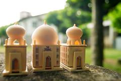Taj Mahal (Hanzo STD) Tags: sonyalphaa550 a550 hotel india nature buildings
