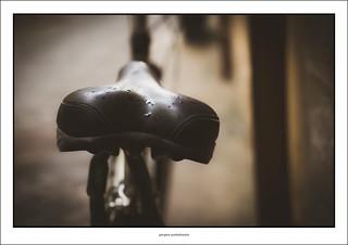 Wet saddle
