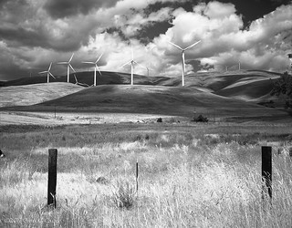 Windmills, Maryhill Loop Road # 2