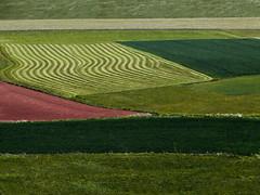 Varied shapes (Greymark) Tags: landscape grassland minimalism hauteloire pasture shapes form