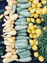 summer squash color. (howard-f) Tags: veggies vegetables squash summersquash rootvegetables farmersmarket cucumber zucchini beets radish vsco vscocam vscogrid iphone iphoneography southpasadena southpasadenafarmersmarket shoploca supportlocal