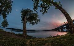 Nature distortion (Resad Adrian) Tags: trees water distortion fisheye evening river susquehanna columbia pa
