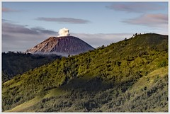 peace in the air (i.v.a.n.k.a) Tags: semeru mahameru volcano volcanoes active eruption landscape morning valley indonesia java ivanadorn ivanahesova sonyalpha