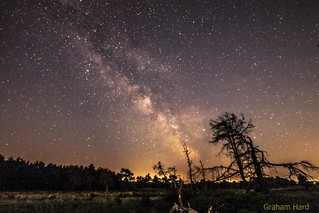 MilkyWay over Ashdown Forest