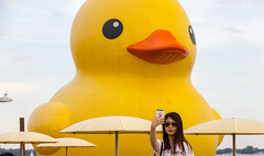 Giant Rubber Duck Selfie (dtstuff9) Tags: toronto ontario canada day giant rubber duck lake harbourfront harbour hto park yellow water big large oversize selfie