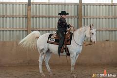 JBC_9193.jpg (Jim Babbage) Tags: krahc annualshow horse bethany horseshow