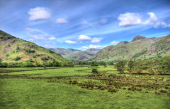 Ambelside View (Tom Farrow) Tags: mountains framed green sheep tree lakes district hedge hill scenery beautiful sky clouds hdr handheld
