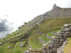 611S Machu Picchu