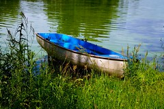 Blue boat on green water. (rustyruth1959) Tags: nikon nikond3200 tamron16300mm lake water boat burtonconstablehall yorkshire eastyorkshire footpath ripples blueboat mooring plants foliage green greenery weeds southlake seat rowlocks hull bow grass reflections tree gettyimages serpentine path walkway vessel transport