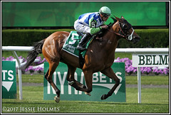 Hawksmoor wins the New York (Spruceton Spook) Tags: horseracing horses belmontpark