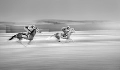 True Grit (JDS Fine Art Photography) Tags: horses horseracing racetrack training practice grit determination competition speed bw inspiration drive focus intensity dreams sunrise crackofdawn earlytraining morning