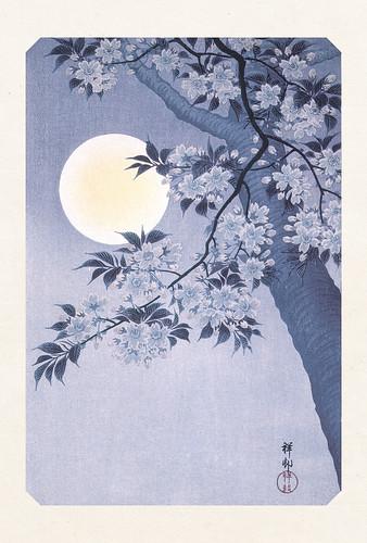 03-Carte postale // 10x15cm // Cerisier