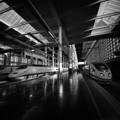 AVE (doistrakh) Tags: lomo lca120 mediumformat film bw monochrome blackandwhite travel europe spain espana madrid trainstation railway madridpuertadeatocha