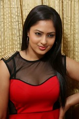 Indian Actress Nikesha Patel Hot Sexy Images Set-2 (26)