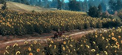 """""""Travelling"""" (L1netty) Tags: thewitcher3 screenshot games gaming reshade pc cdprojektred landscape field ciri rider sunflowers nature outdoor fantasy color scenery character road videogame trees 10k"""
