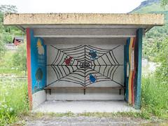 Spiders rest (neil.bulman) Tags: norway shelter cruise scandanavia thomson landofthemidnightsun flam busshelter spiders spidersweb thomsoncelebration flåm sognogfjordane no