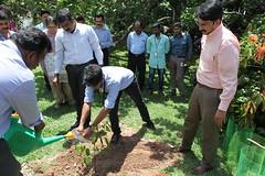 World Environment Day (Technopark Trivandrum) Tags: worldenvironmentdayplanting 101 saplings technopark