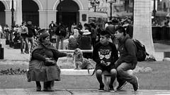 Compartiendo banca - PLaza Mayor de Lima (jimmynilton) Tags: plaza mayor lima armas capital perú banca andina perro descanso domingo relax 55210mm emount sony nex5n street fotografia callejera photography