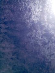 Sky032413 (homeboy63) Tags: spring 2013 humboldt sequoiapark eureka
