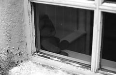 Teddy Bear P30 pyrocat_HD Ferrania (Man with Red Eyes) Tags: meta35 ferrania p30 p30alpha filmtest pyrocathd 11100 15mins semistand presoak 70f v850 nikonf6 f6 50mmf12 ai lancaster lancashire northwest analog analogue blackwhite bnw silverhalide monochrome homedeveloped teddybear window 80iso