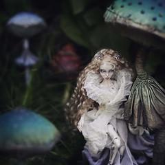 Titania, the Queen of Fairies, and mushrooms. Lightpainted Doll- OOAK porcelain BJD. Articulated doll with silver hand-sculpted and painted incrustations. Roughly miniature size, 1:12 scale. (cureilona of Lightpainted Doll) Tags: авторскаякукла шарнирнаякукла шарнирныекуклы ручнаяработа poupéedauteur miniature куклы бжд фарфор кукла фарфоровыекуклыкупить puppe kugelgelenkpuppe kugelgelenk bastelanleitungfürkugelgelenkpuppen künstlerpuppe gothic fee winzig künstlerdoll miniatur porzellan tutorial handmade artdoll фарфоровыекуклы купить фарфоровые авторская fantasy videotutorial lalka porcelana lalkaporcelanowa artystyczna sztuka ręczniemalowane chinapaints chinapainting stringing фея