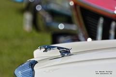 019-DSC_2830_DxO (Pán Marek - 583.sk) Tags: fordmustang alfaromeo fiat bmw tilux fordtransit škodambx lada vaz žiguli jaguar daimler jaguarxj40 chevrolet mercedesbenz renault 8 volkswagen vw chrobák transporter rolls royce simca
