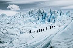 The hike (julien.ginefri) Tags: argentina patagonia moreno glaciar ice glacier patagonie argentine panoramic mountain sky montaña cielo glace layer perito hike south america latin peritomoreno snow trek trekking elcalafate
