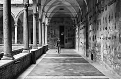 """"""" Siena, walking in beauty! """" (pigianca) Tags: italy siena university chiostro monochrome blackwhite streetphoto urbanphoto architecture leicam82 vgtnokton35mmf14"""