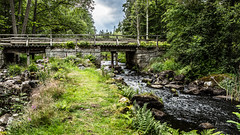 _61A4238.jpg (fotolasse) Tags: stenfors natur nature sweden sverige småland kronoberg å vatten water river bäck sten grönt green canon hdr 16x9 tingsryd