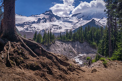 a River Runs Through It (writing with light 2422 (Not Pro)) Tags: mountrainiernationalpark mountrainier littletahoma emmonsmoraine glacierbasintrail whiteriver stratovolcano volcano trees rocks glacier bridge richborder sonya77 washingtonstate clouds landscape