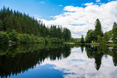 Loch Ard (Alec-Gibson) Tags: lochard scotland reflections loch