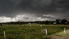 DSC_0080-10Białowie (mrpaymey) Tags: poland storm landscape podlasie narewka
