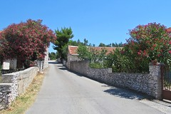 road in the village :) (green_lover) Tags: ražanj croatia village road wall fence houses vanishingpoint vacation travels