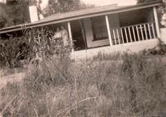 On the verandah (Boobook48) Tags: foundphoto verandah house australia garden