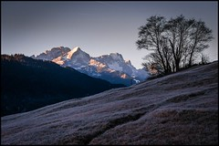 Baum am Berg (BM-Licht) Tags: bavaria bayern d700 deutschland garmisch germany gerold geroldsee nikon see winter