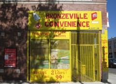 Bronzeville Convenience, Chicago (katherine of chicago) Tags: chicago stores signs bronzeville storefronts paintedsigns