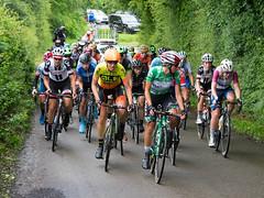 JC_flickr_26108389.jpg (Jason Crellin) Tags: greenjersey ovoenergywomenstourofbritain2017 mainpeloton gibfieldlane derbyshire stage4 leader