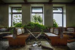 Back to nature (flowerpower.1969) Tags: urbex urban exploration decay decayed forgotten vergessen abandoned old alt verfallen verlassen lost place places kaputt ue