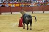 El Fandi en Alicante (Fotomondeo) Tags: toro toros plazadetoros corridadetoros torero matador elfandi davidfandila alicante alacant lashoguerasdesanjuan fogueres bull bullfight bullfighter bullring spain españa