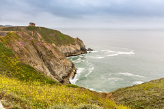 Antidote for a Heat Wave (Jill Clardy) Tags: california northamerica sanfrancisco usa devils slide trail hiking biking path roadway highway 1 san mateo county pacifica foggy summer day pacific ocean waves cove cliffs fog 201706254b4a4653