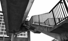 Concrete stairs - Newcastle upon Tyne , UK (harrytaylor6) Tags: newcastle tyne urban stairs concrete brutalism architecture 60s tonal textures texture