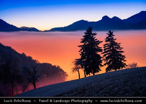 Switzerland - Jura Mountains - Juragebirge - Frozen winter snowy landscape submerged in sea of fog at Dusk
