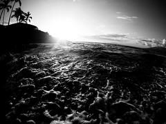 Ulua Beach Maui Noir 2 (MassiveKontent) Tags: maui sunset ocean pacificocean clouds water beach sun seascape hawaii hawaiinisland tropics palm dusk outdoor landscapephotography gopro monochrome bw blackandwhite