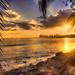 A Glimpse of Panama