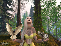 Flor Pálida (Sydney Levee) Tags: birds hibou animal virtuel chouette maitreya fantasy forest vues pictures galleries places destinations secondlife girls exxess hair mesh lelutka head viewer group femmes femme monde world celebrating art shaps realeases photoshop love photographer created trees arbres sky country glamour faves magic pretty yeliz clothes fashion mandala avatars pinup undrsea locations addicts firestorm mystical sim explore découverte ballades ethnic