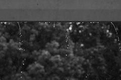 EHZ festibaleko desmuntaia (MAKÖKI·GROUPS) Tags: ehz festibala desmuntaia bolondresak laguntzaileak lekorne mendionde lapurdi euskal herria zuzenean makoki groups euria ekaitza lokatza